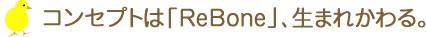 2016年限定メモリアルベア 春夏モデルのコンセプトは「ReBone」、生まれかわる。