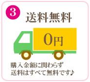 (3)送料無料