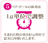 (5)ベア・ドールの体重は1g単位で調整。